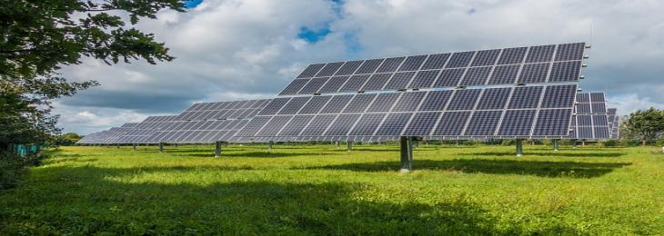 Clear Solar Cells Do Not Deprive Greenhouse Crops of Sunlight
