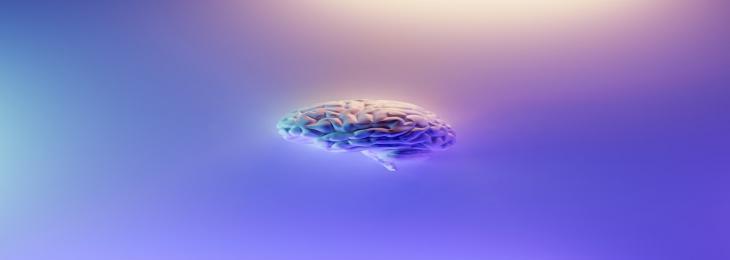 Novel Brain Implant Controls Mice's Social Interactions