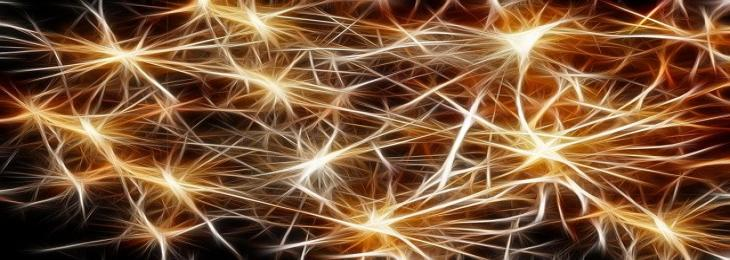 Psychedelics promote the growth of brain connections as a result of depression