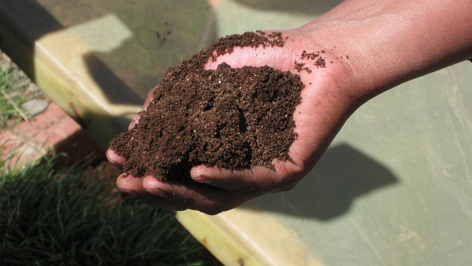 Researchers Used Human Waste to Create Fertilizers